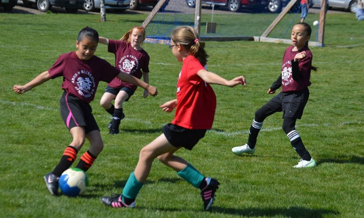 Soccer receives A+ grade for health benefits for kids, study finds