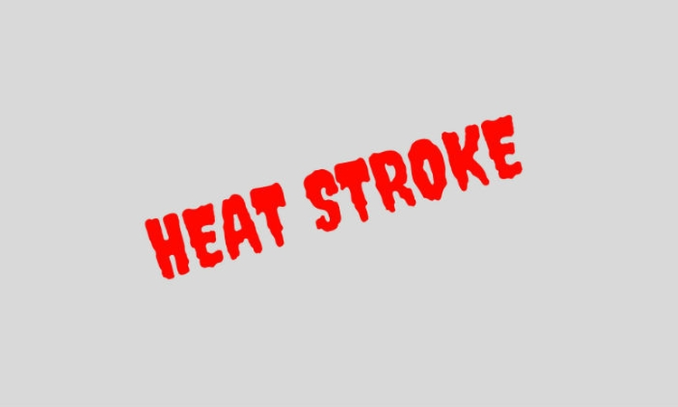 Heat stroke: experts say cool first, transport second